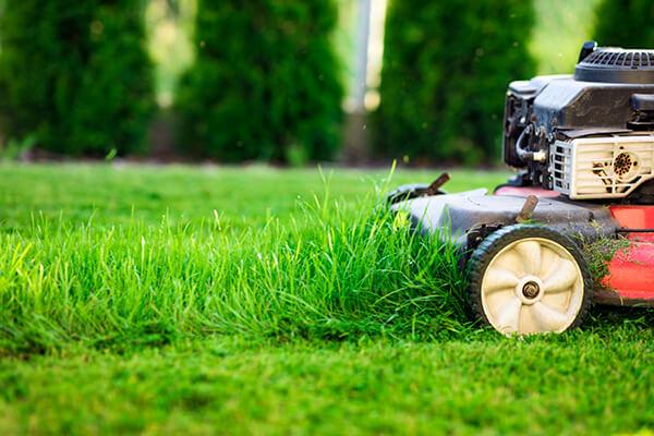 Hauswartung Gartenarbeit